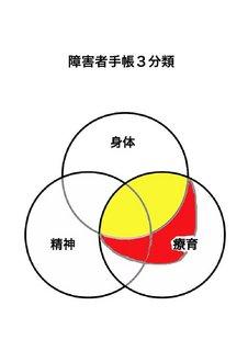手帳3分類.jpg