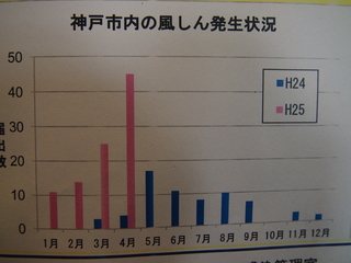 P5041661.JPG